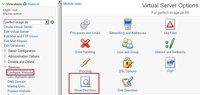 Virtualmin – Redirect Permanent für eine Domain einrichten